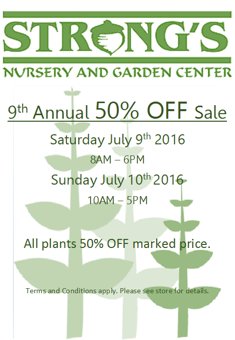 50% OFF ALL PLANTS